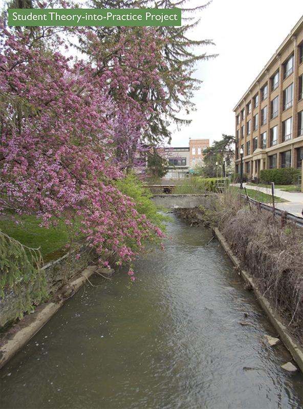 Delaware Run Stream Assessment: Spring 2014