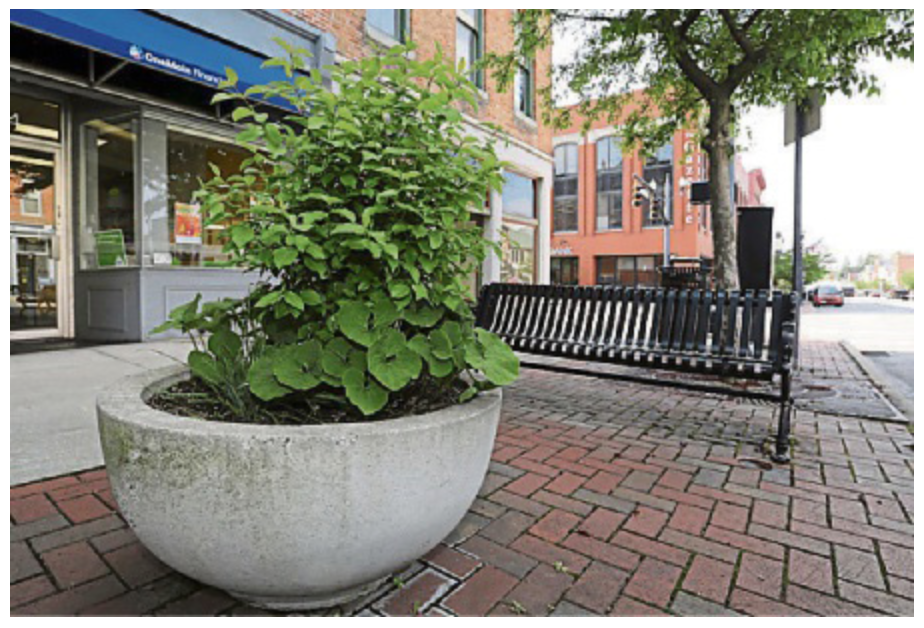 Downtown Delaware's Native Plantings