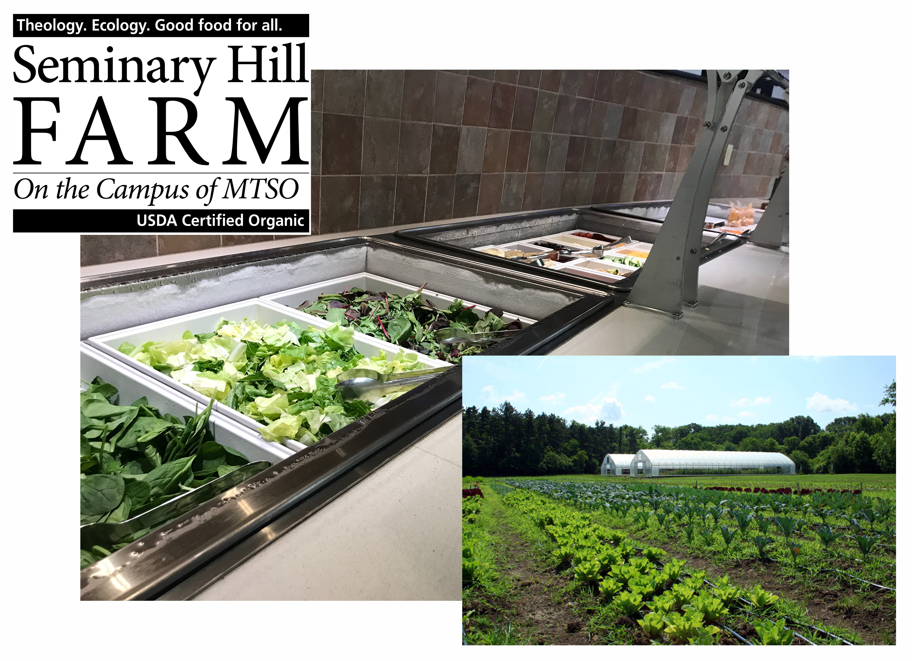 OWU's New Hyper-Local Salad Bar @ Smith Dining Hall